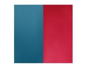 Vinyl Bague Bleu / Framboise 12 mm